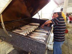 festa do peixe de Arroio do Silva